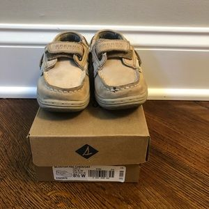 Sperry Bluefish Toddler Shoe